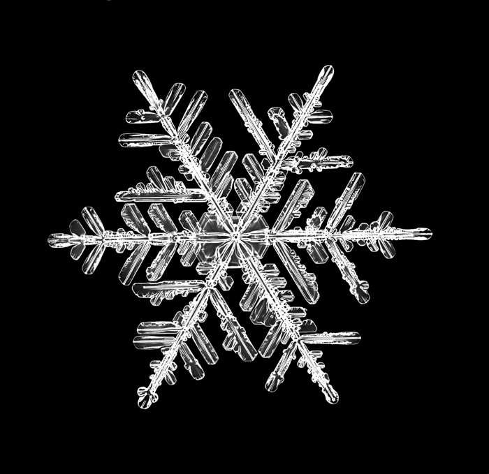 A super closeup image of a snowflake under a black background.