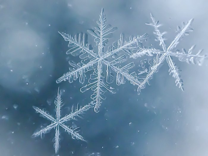 A creative macro snowflake photography composition.
