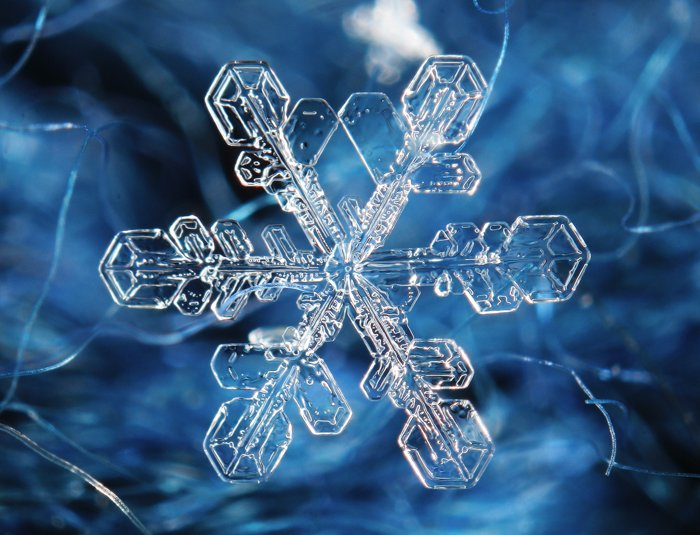 Picture of a snowflake in macro.