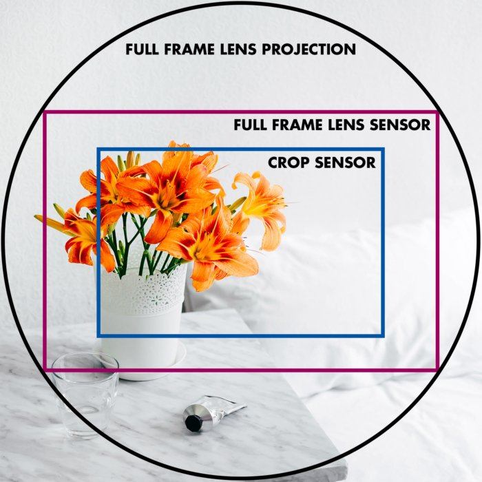 An illustrative image of lens projection and sensor sizes