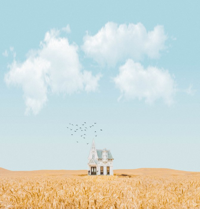 A digitally manipulated image of a house, birds and a landscape