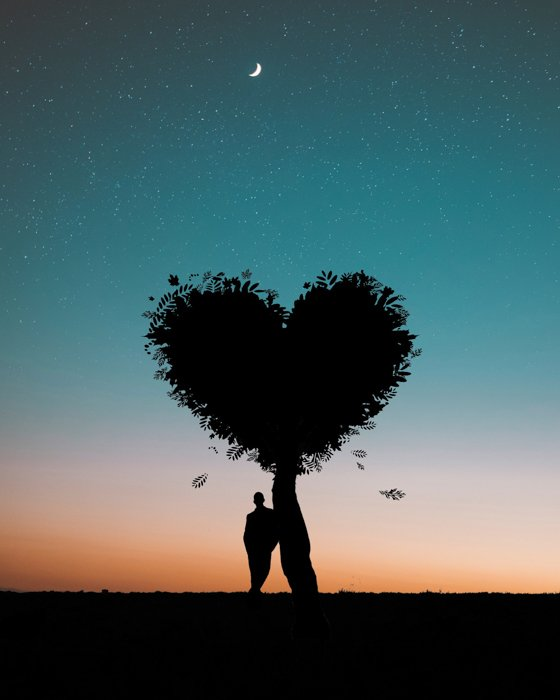 Manipulated image of with a person standing next to a heart-shaped tree behind the stars