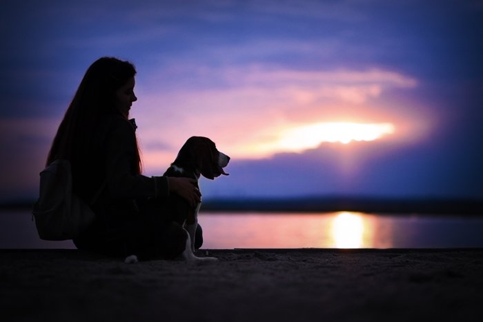 Cool silhouette photography of a girl and a dog on a beach at evening