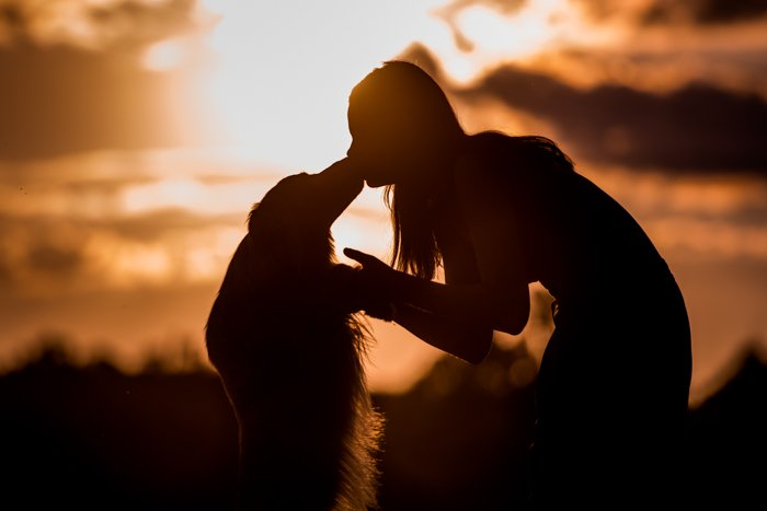 Cool silhouette photo of a girl kissing a dog