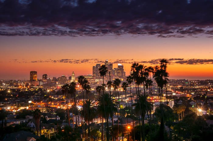 sunset through the palm trees, Los Angeles, California