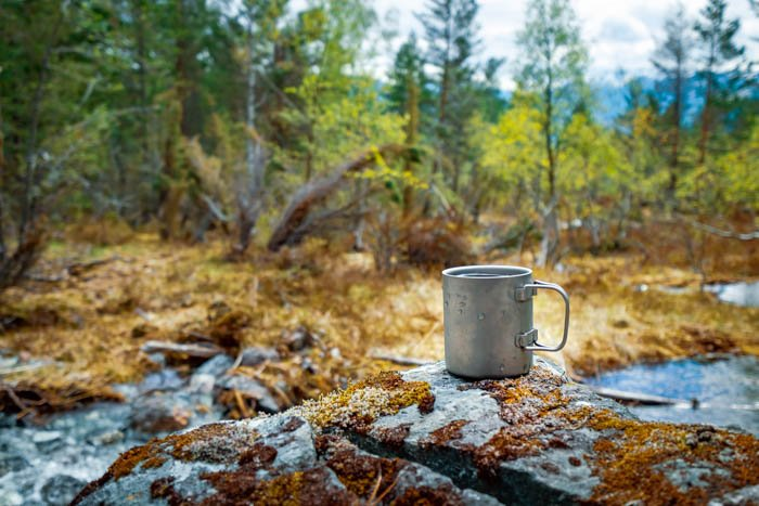 A travel still life photography of a camping mug and forest