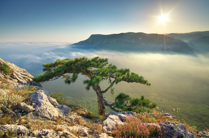 A travel photography image of a foggy landscape and sunrise