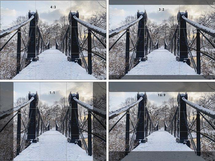 显示4不同纵向比的桥梁的照片