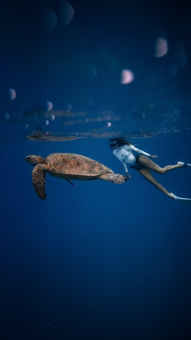 an image of a woman snorkeling next to a sea turtle