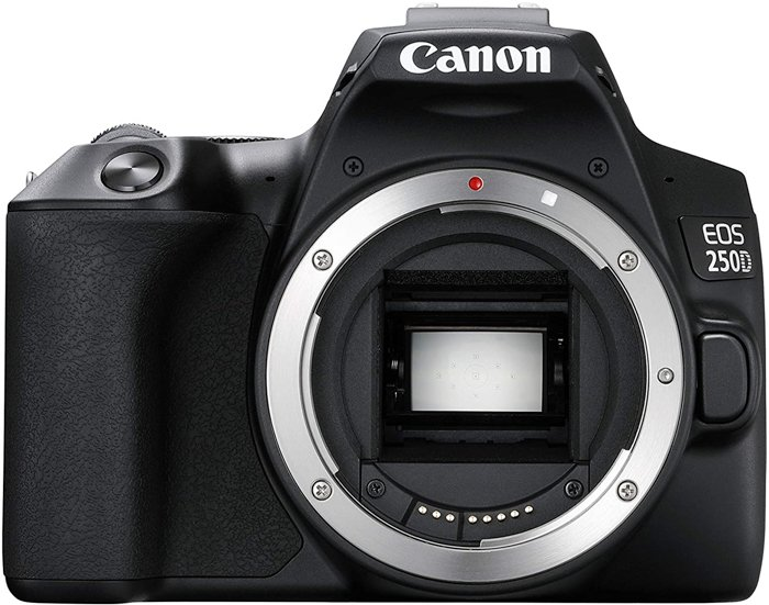 image of Canon EOS 250D