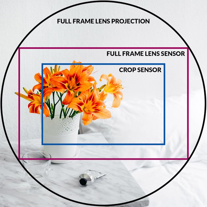 an infographic explaining the crop factor asa rectangle inside the round lens