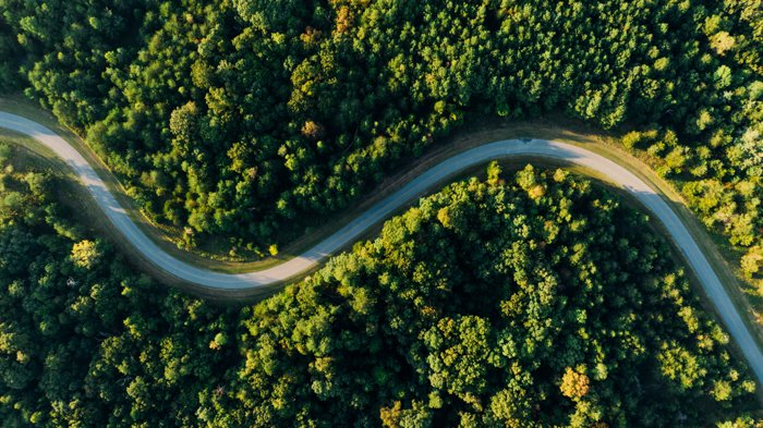 a drone shot of a winding road through a green forest