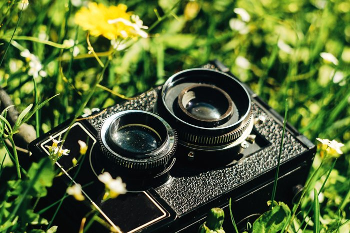 Picture of a twin-reflex film camera among flowers and grass