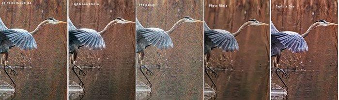 heron compare program noise reduction