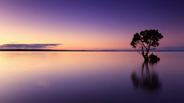 a photo of the horizon to show how to use leading lines in photography