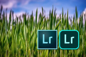 Lightroom icons against grass