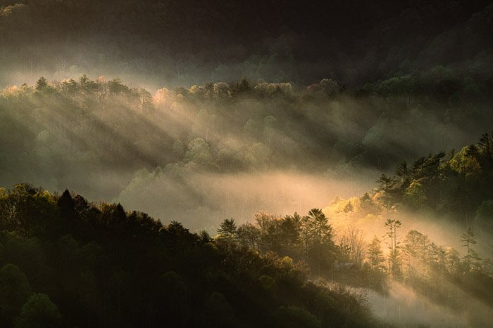 Mountain fog in valley