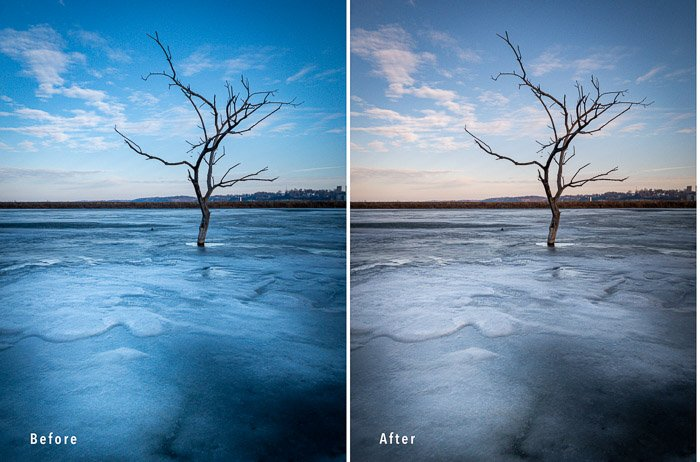 comparison diptych of two photos of an ice tree to show color temperature