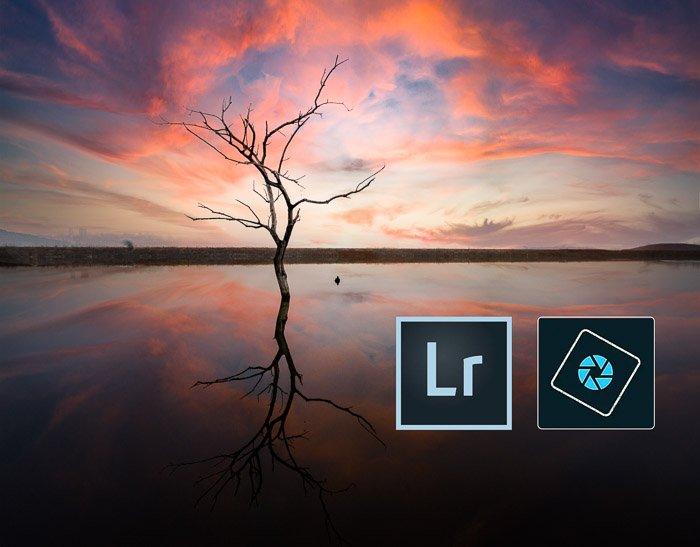 Lightroom Photoshop Elements icons tree sunset