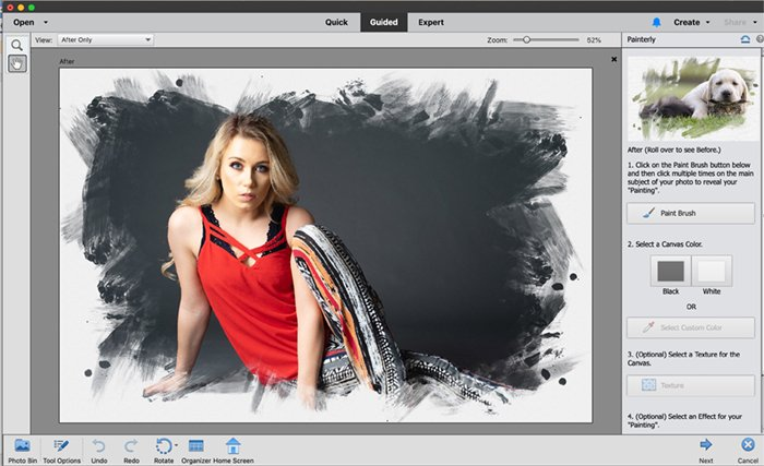 Screenshot photoshop elements painterly effect