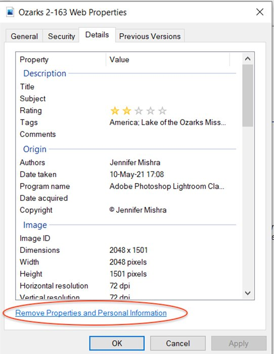 a screenshot of Windows properties panel showing how to remove metadata from your image