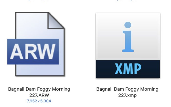 Raw and XMP file icons