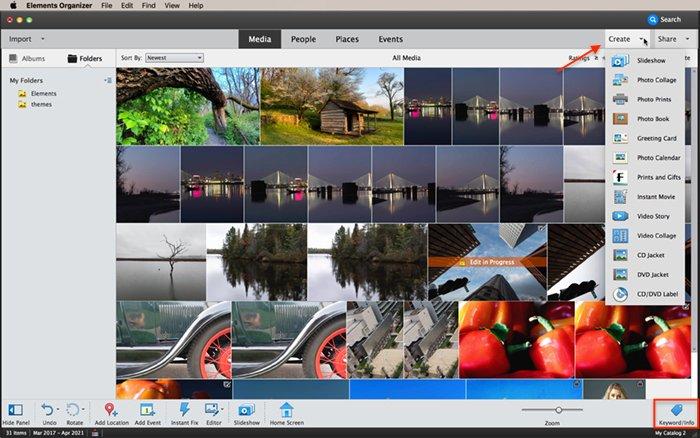 Screenshot of Photoshop Elements Organizer workspace