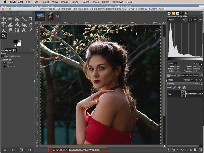 Screenshot showing Raw photo open in GIMP