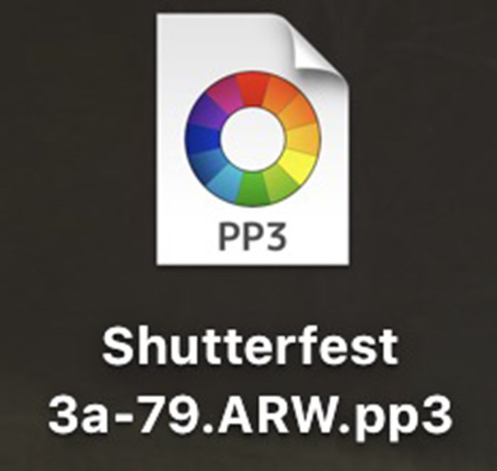 The converted raw image will be a new .pp3 file