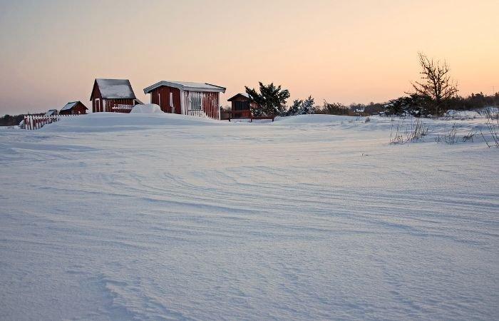 Uma imagem de paisagem de neve com um farelo de fundo.