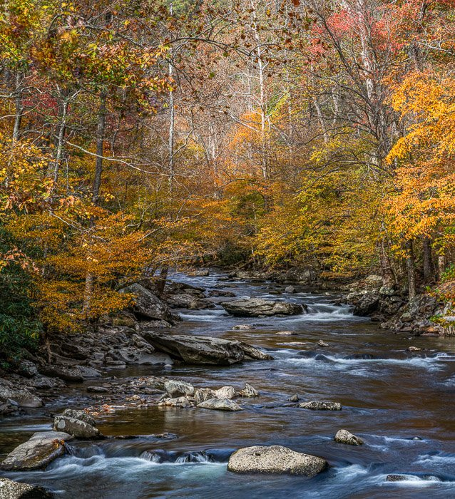 A flowing river surrounded by autumn trees to illustrate recommended landscape photography settings