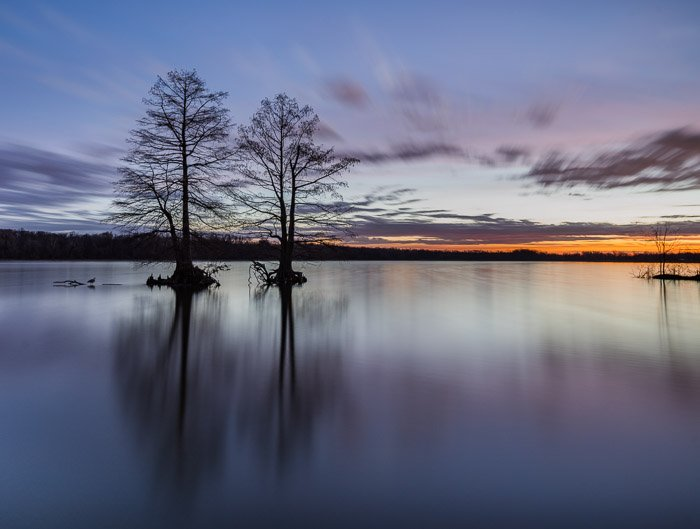 Two trees in a lake at sunset to show best landscape photography settings to blur clouds