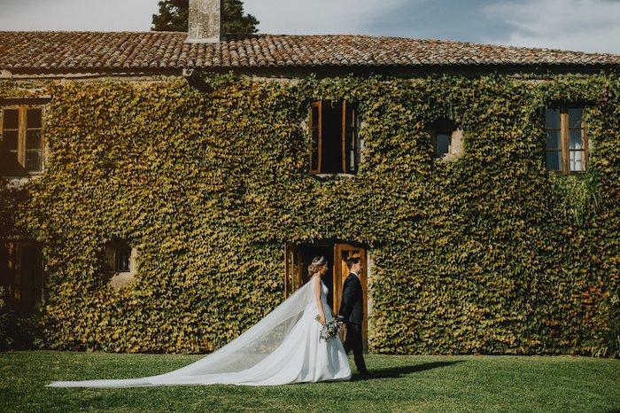 夫妇的全框架传感器相机图象在他们的婚礼之日在墙壁前面的攀岩植物前面