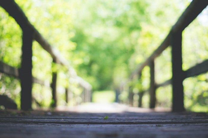 using a shallow depth of field to create a blurry bridge image