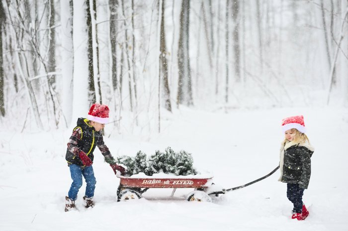 children pulling a sled through snow