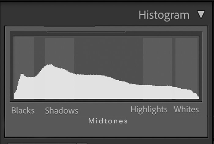 screenshot of a histogram