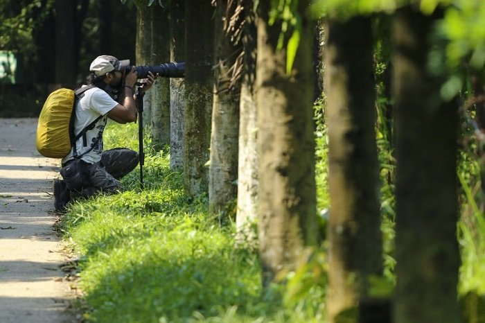 photographer using a telephoto lens outdoors
