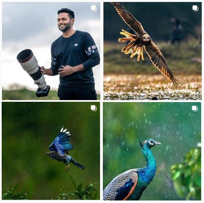 a screenshot of bird photographer varun aditya instagram portfolio