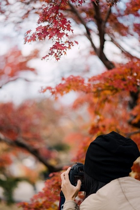 woman shooting on a DLSR with a Japanese maple tree in the background