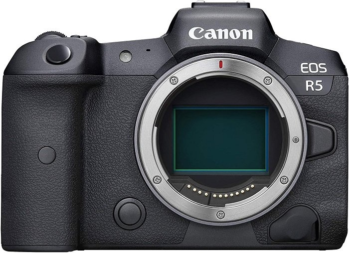 best mirrorless camera for travel 2021 professional Canon EOS R5