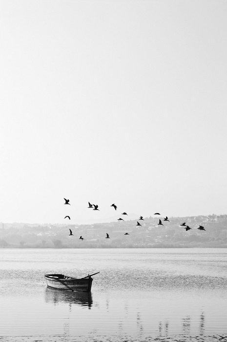 black and white films photo of a boat with birds flying overhead