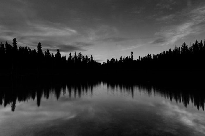 black and white photography of a river lined by trees with horizontal and vertical symmetry