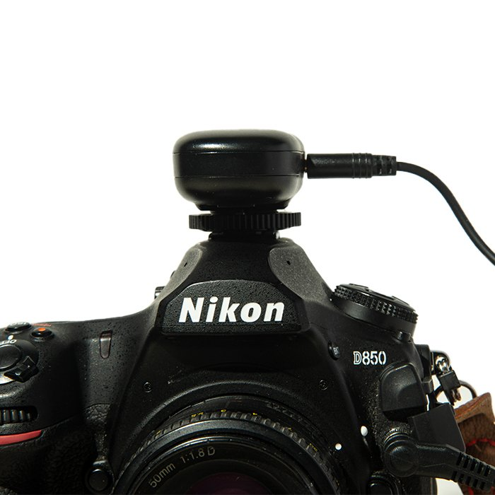 A wireless receiver for a camera remote installed on a Nikon camera hot shoe