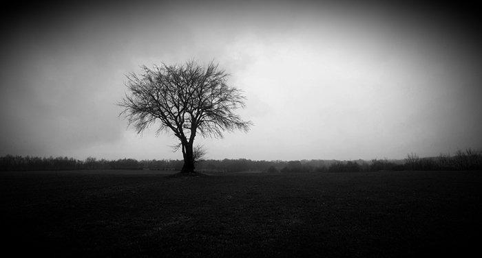 landscape vignette