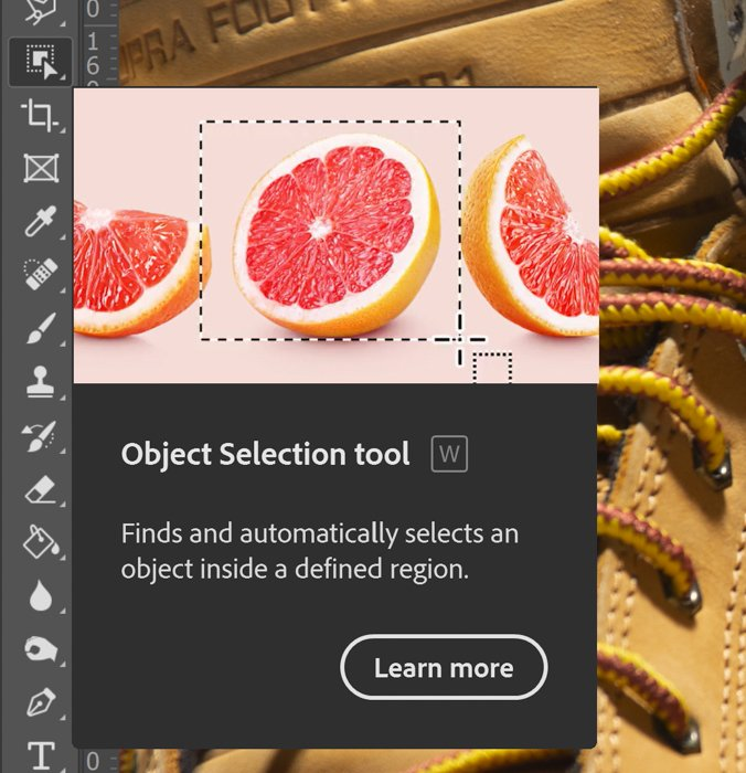A screenshot of a dialogue box explaining what Object Selection Tool does