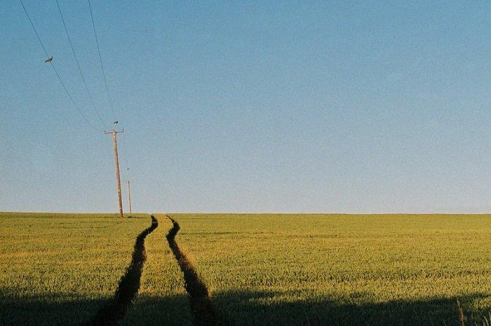 farmer's track through a green field