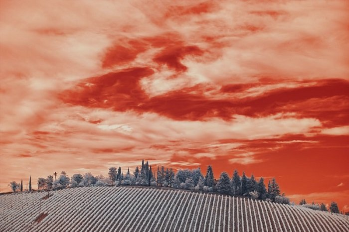 infrared effect on a scene of the sky over a rolling field