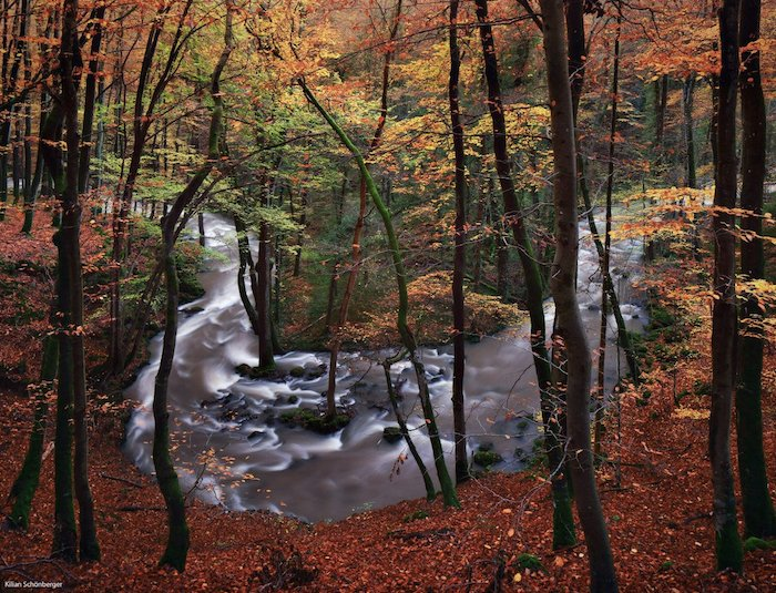 a slow exposure shot of a river flowing through a forest
