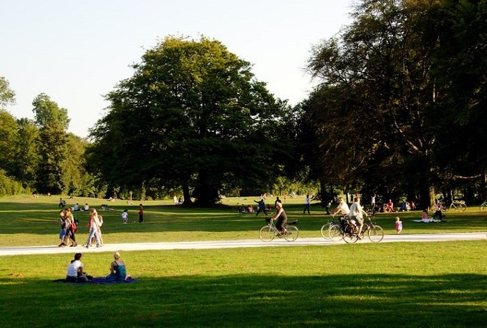 photography of a park on a sunny day