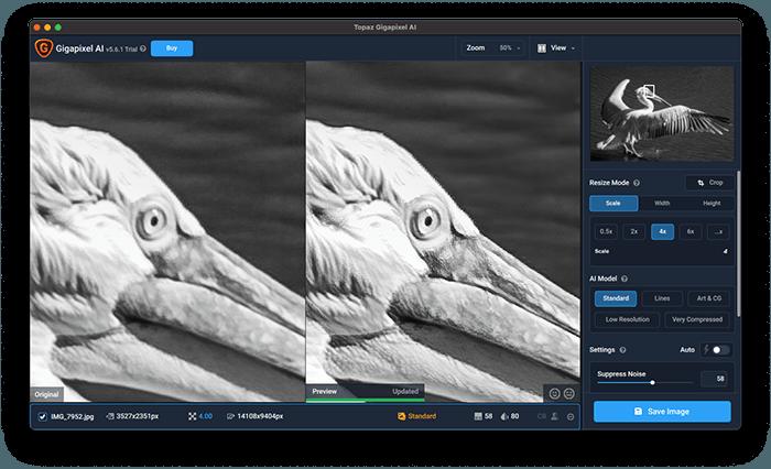 a screenshot of topaz gigapixel ai featuring pelican example